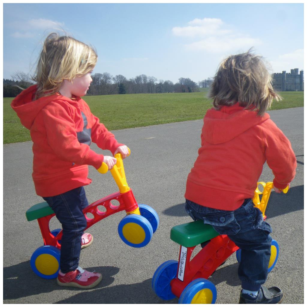 toddle bike twins