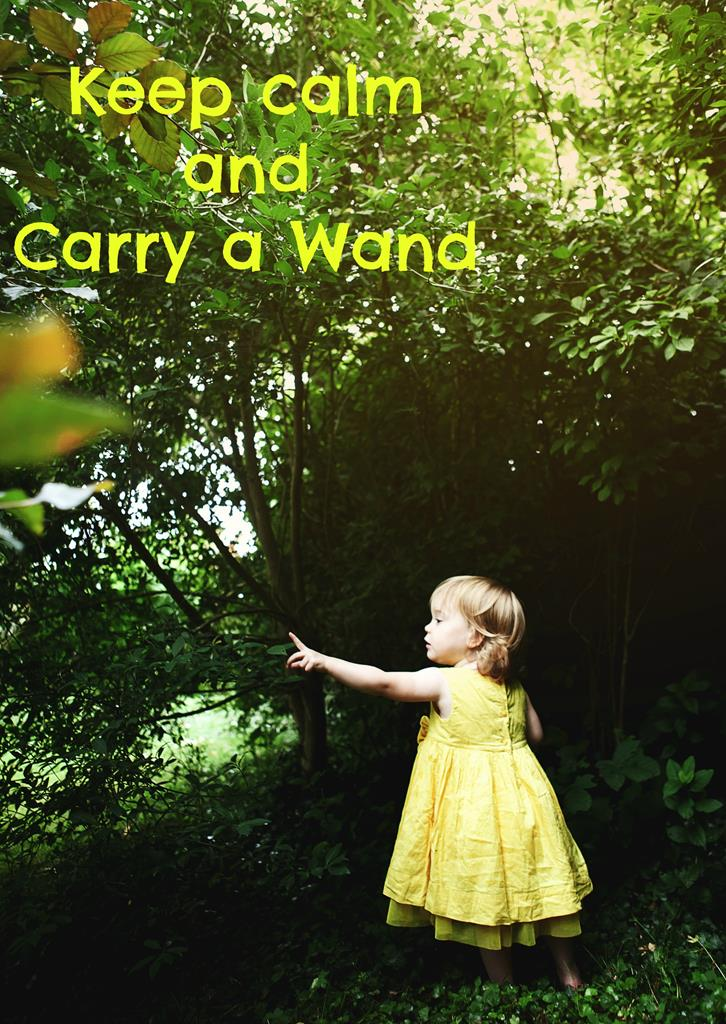 carry a wand