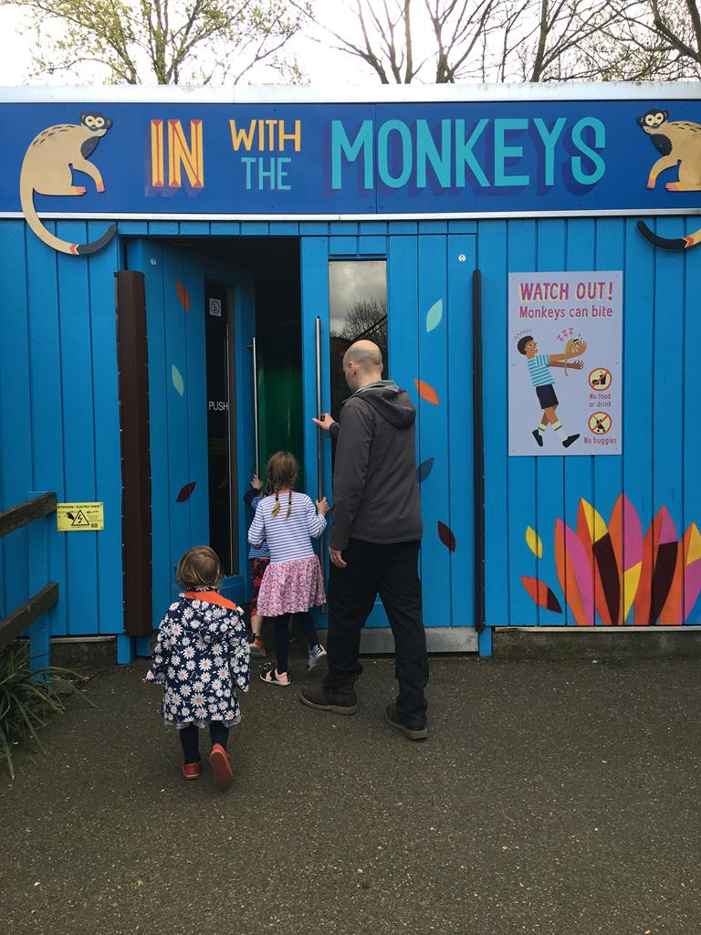 in with the monkeys