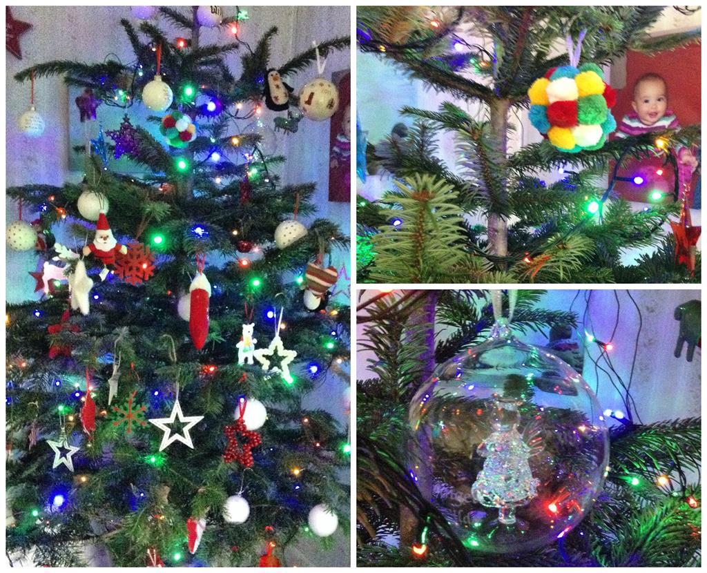Our Rainbow Star Christmas Tree